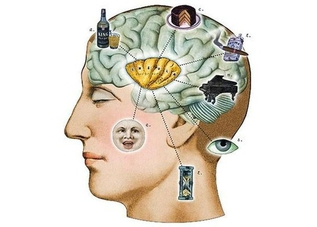 Мозгофитнес